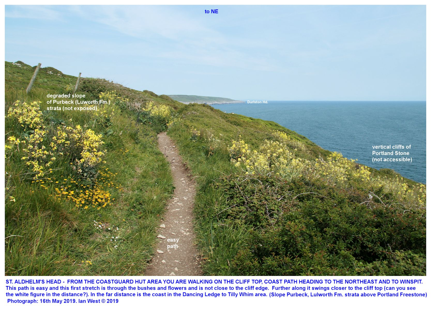 Footpath on the cliff top between the Coastguard Hut, St. Aldhelm's Head and northeast to Winpit