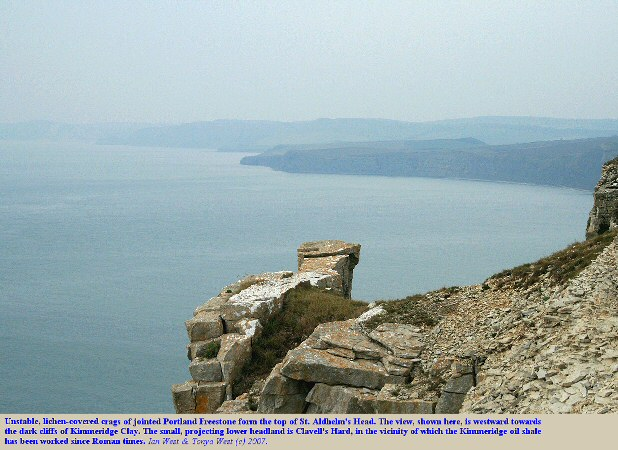 A view westward from the high rocks of St. Aldhelm's Head, Dorset, towards the Kimmeridge cliffs, evening, 7 October 2007