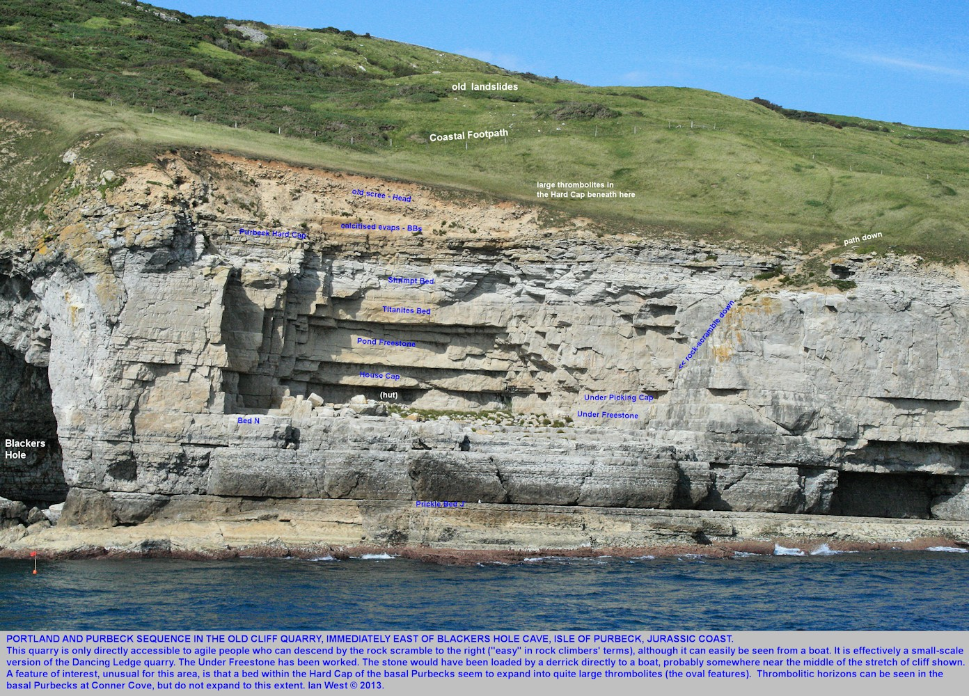 Details of the old quarry immediately east of Blackers Hole, near Swanage, Dorset, showing thrombolites in the Hard Cap of the basal Purbeck - enlarged view