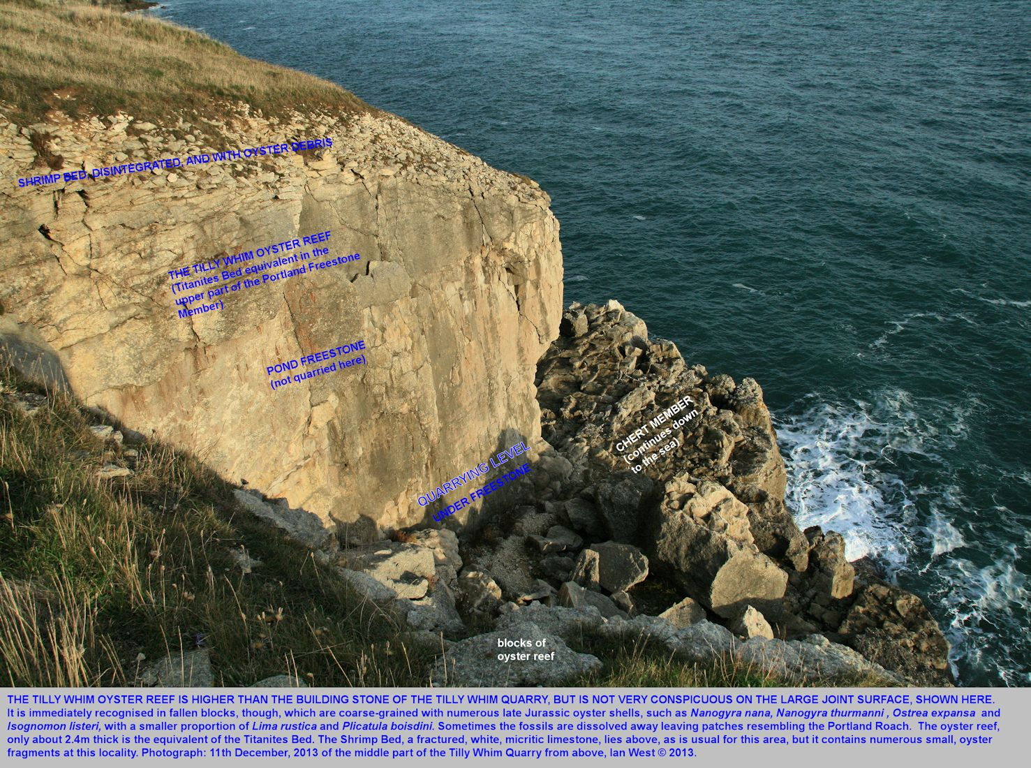 The location of the Tilly Whim Oyster Bed, in rock face of joint origin, Tilly Whim Caves, near Anvil Point, and near Durlston Head, Swanage, Dorset, 11th December 2013