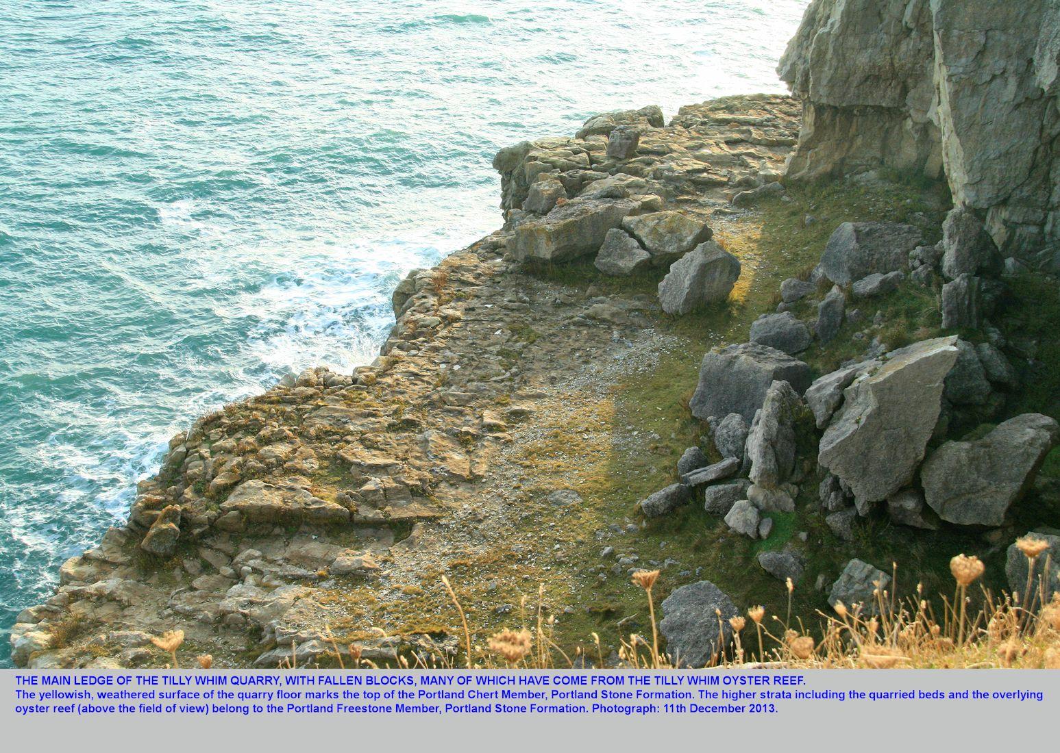 Durlston Head, England - Geology by Ian West
