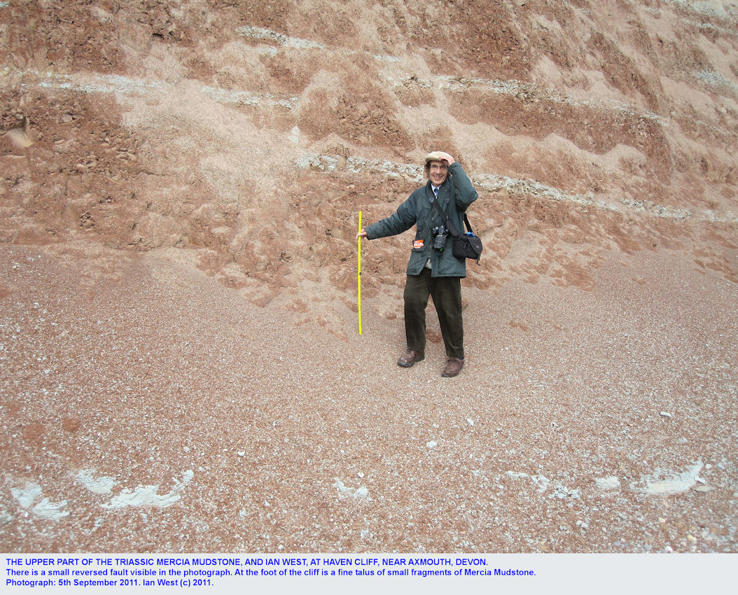 The Mercia Mudstone with a small fault, Haven Cliff near Axmouth, East Devon, and with Ian West, 2011
