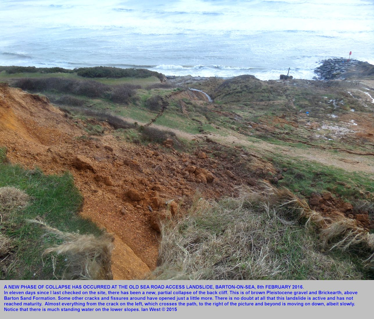 Further collapse of the back cliff of Pleistocene gravel and Brickearth at the old Sea Road Access, 9th February 2016
