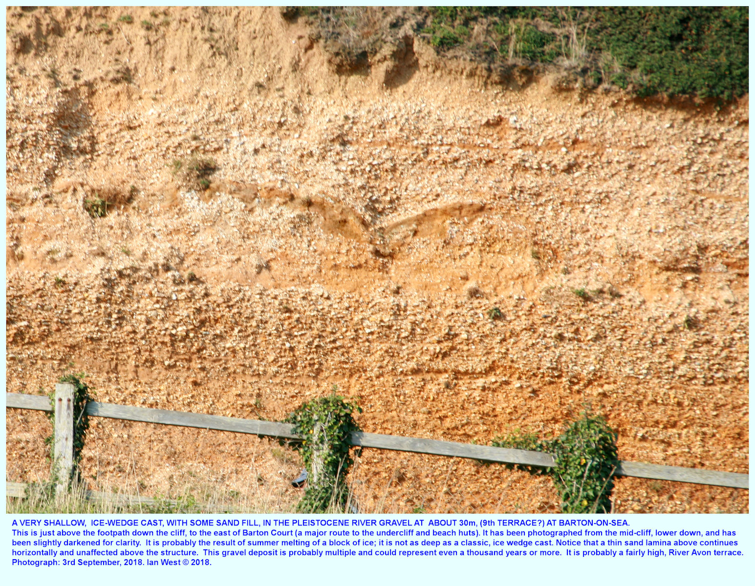 Evidence of a small ice-wedge in the Pleistocene gravel, of Terrace 9, at the cliff path down, just east of Barton Court, Barton-on-Sea with brickearth above