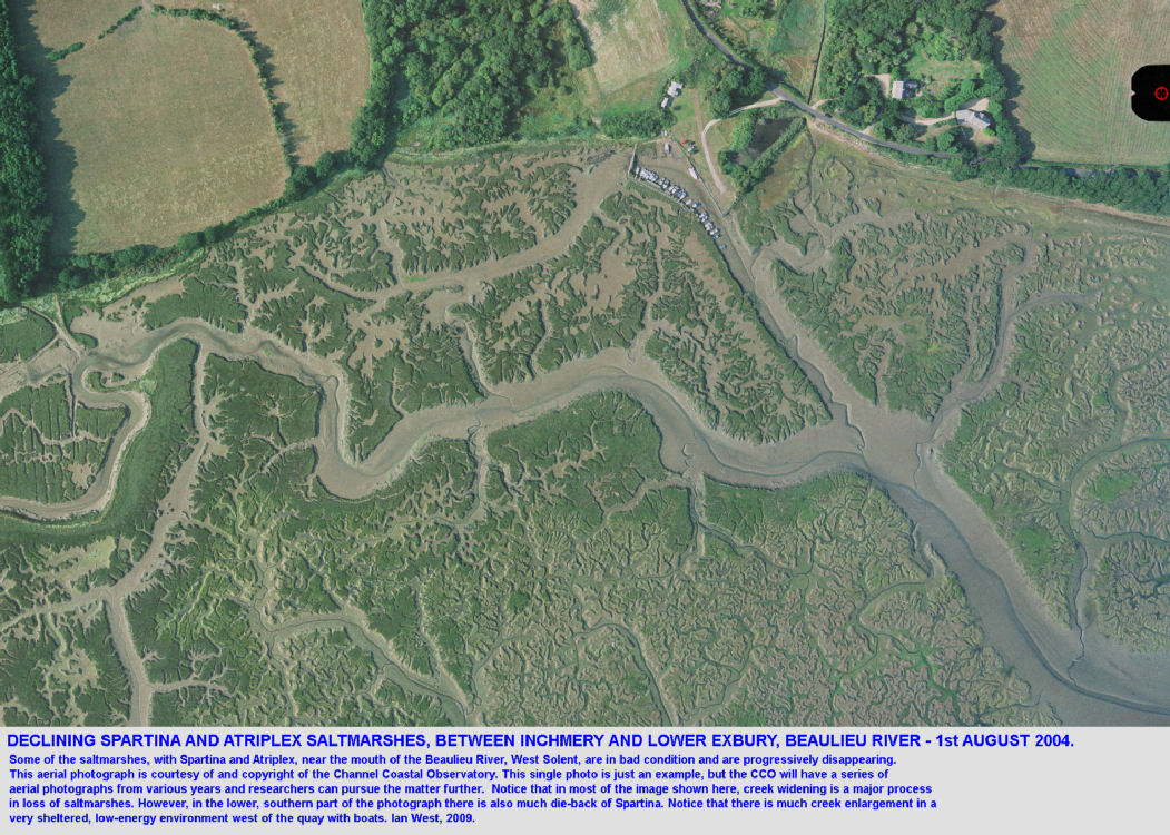 Deterioration of Spartina and Atriplex saltmarhes by creek enlargement and die-back between Inchmery and Lower Exbury, near the mouth of the Beaulieu River Estuary, Hampshire, CCO image, 1st August, 2004