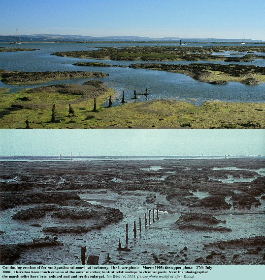 Changes in the eroding saltmarshes at the shore, half a kilometre west of Inchmery House, Beaulieu River estuary, Hampshire, near Lepe Beach, from 1993 to 2008