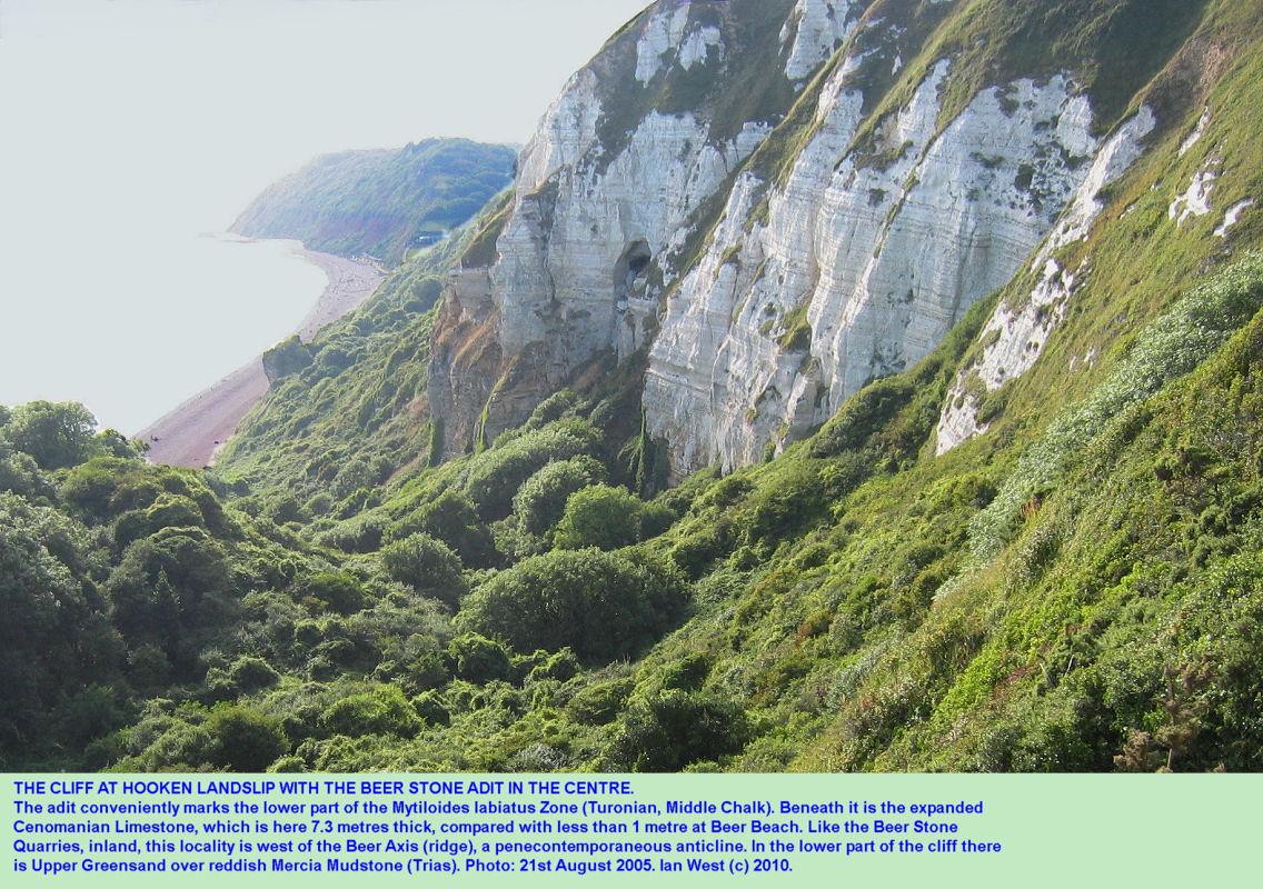 The adit in the Beer Stone, Mytiloides labiatus Zone, the Hooken Landslip, Beer, East Devon, 2005