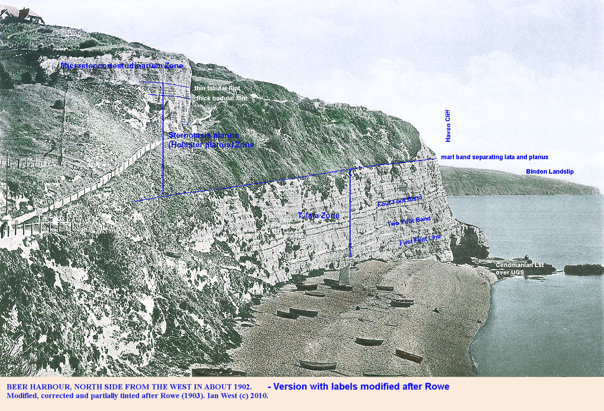 A labelled version of the eastern cliffs of the north side of Beer Harbour, East Devon, in about 1902