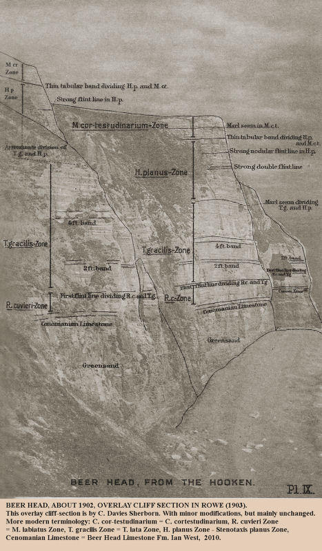 Stratigraphic subdivisions shown in an overlay for the 1902 photograph of Beer Head, Beer, East Devon