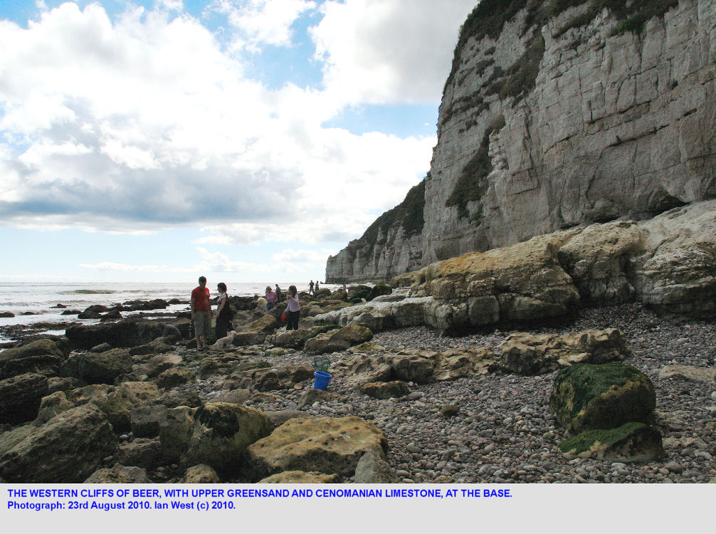 The western Chalk cliffs at Beer, East Devon, looking towards The Hall, 2010