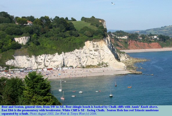 General view of the beach and cliffs at Beer and Seaton, East Devon, as seen from the southwest, August, 2005
