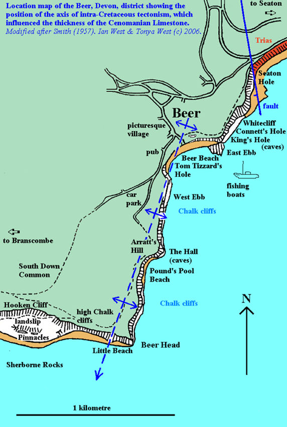 Location map for Beer, East Devon, showing the axis of intra-Cretaceous tectonism, after Smith, 1957