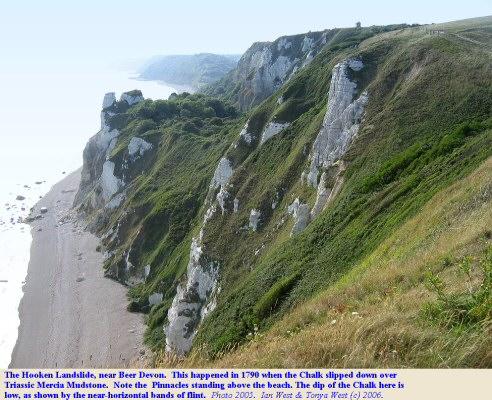The Hooken Landslide of Chalk and Greensand over Mercia Mudstone near Beer, East Devon
