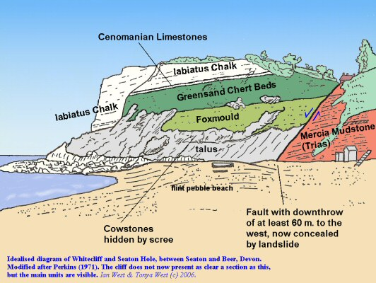 Idealised diagram of the strata at Seaton Hole, between Beer and Seaton, East Devon