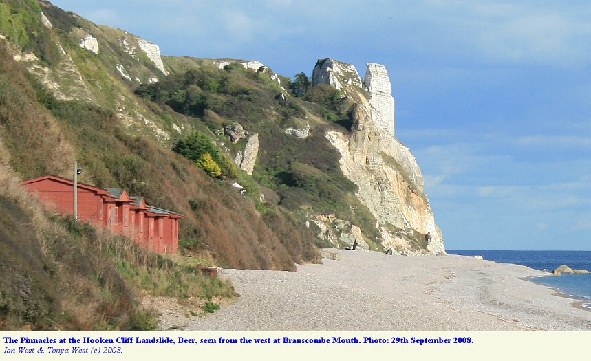 The Hooken Cliff Landslide, Beer, Devon, seen from the west at Branscombe Mouth, 29th September 2008