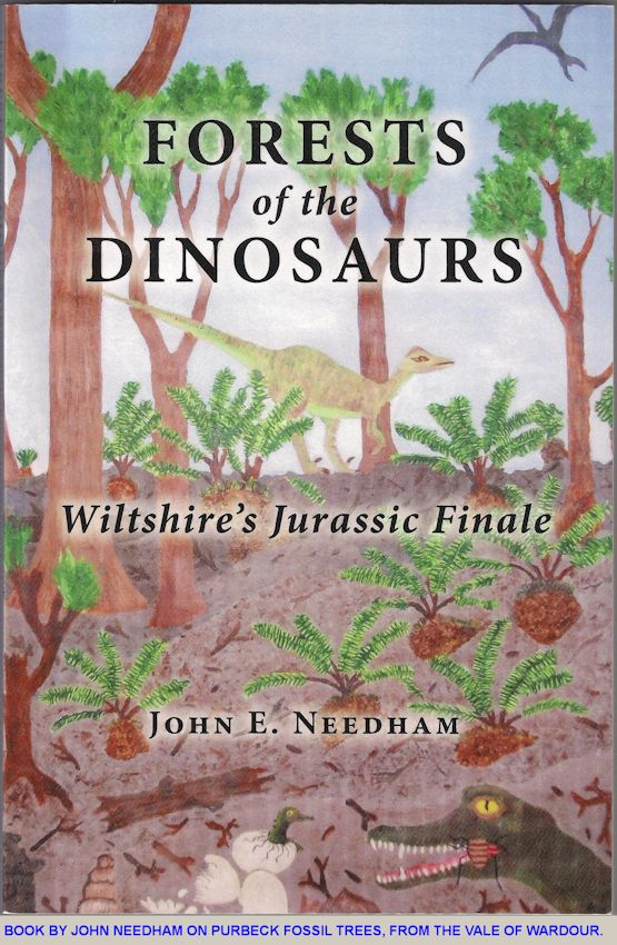 Book by John Needham on the Purbeck Fossil Forests of Wiltshire, 2011