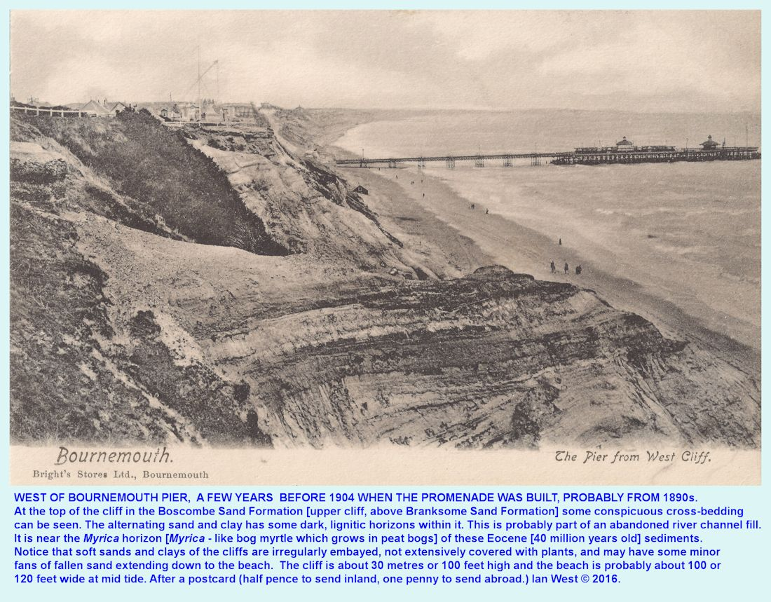 Excellent cliff exposures in the Boscombe Sand Formation over the Branksome Sand Formation in the cliffs to the west of Bournemouth Pier, Dorset at about the end of the 19th century