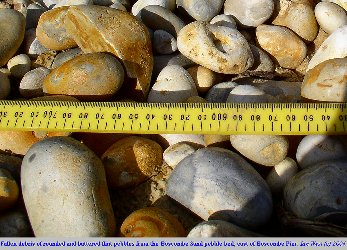 Battered beach pebbles from the Boscombe Sand, east of Boscombe Pier, Dorset