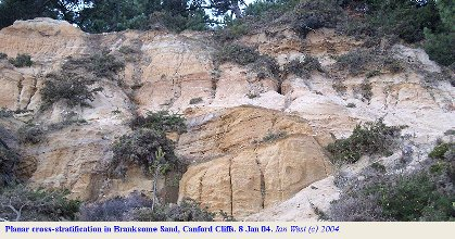 Planar Cross-stratification in the Branksome Sands, Canford Cliffs, Dorset