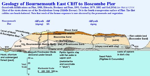 Geology of the East Cliff, Bournemouth, Dorset - diagram