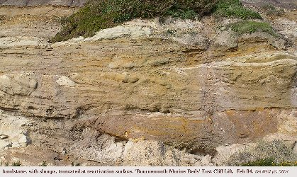 Slumped sandstone with truncated top, Branksome  Sand Formation, East Cliff, Bournemouth