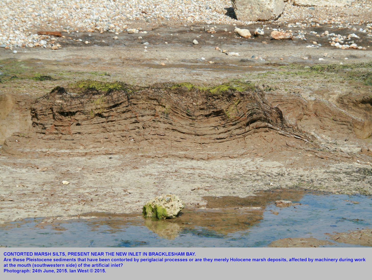 Contorted, laminated marsh silt deposits at the new artificial sea entrance, southern side, Bracklesham Bay, Sussex, 24th June 2015