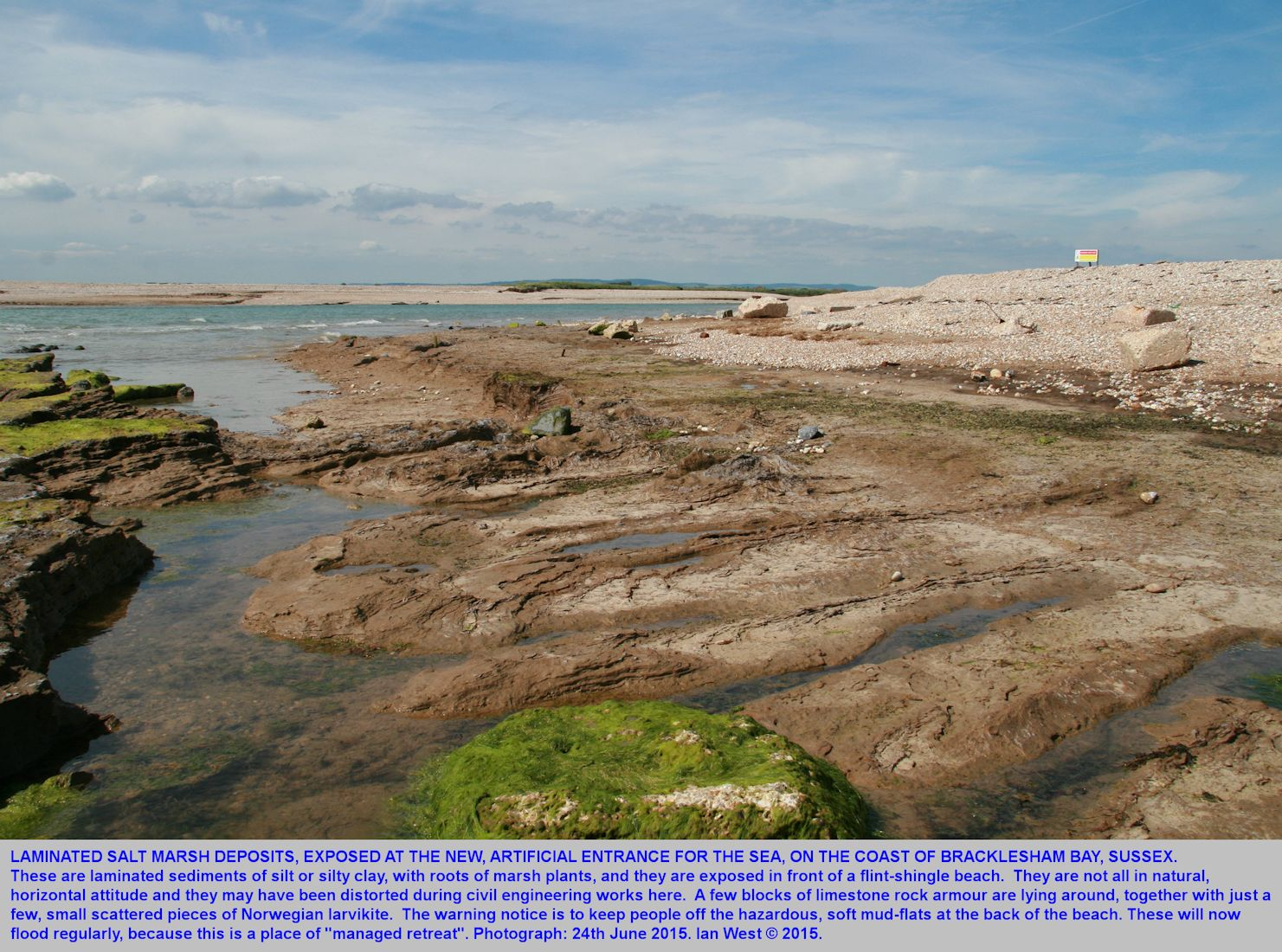 Saltmarsh deposits exposed in front of the flint-shingle beach at the new cutting in Bracklesham Bay, Sussex, 24th June 2015
