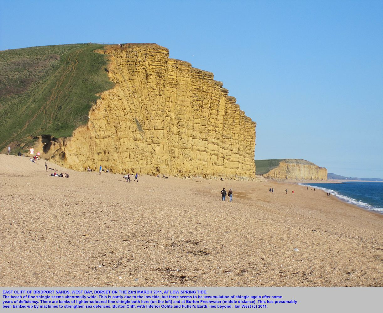 East Cliff, West Bay, Bridport, Dorset, at low spring tide, 23rd March 2011