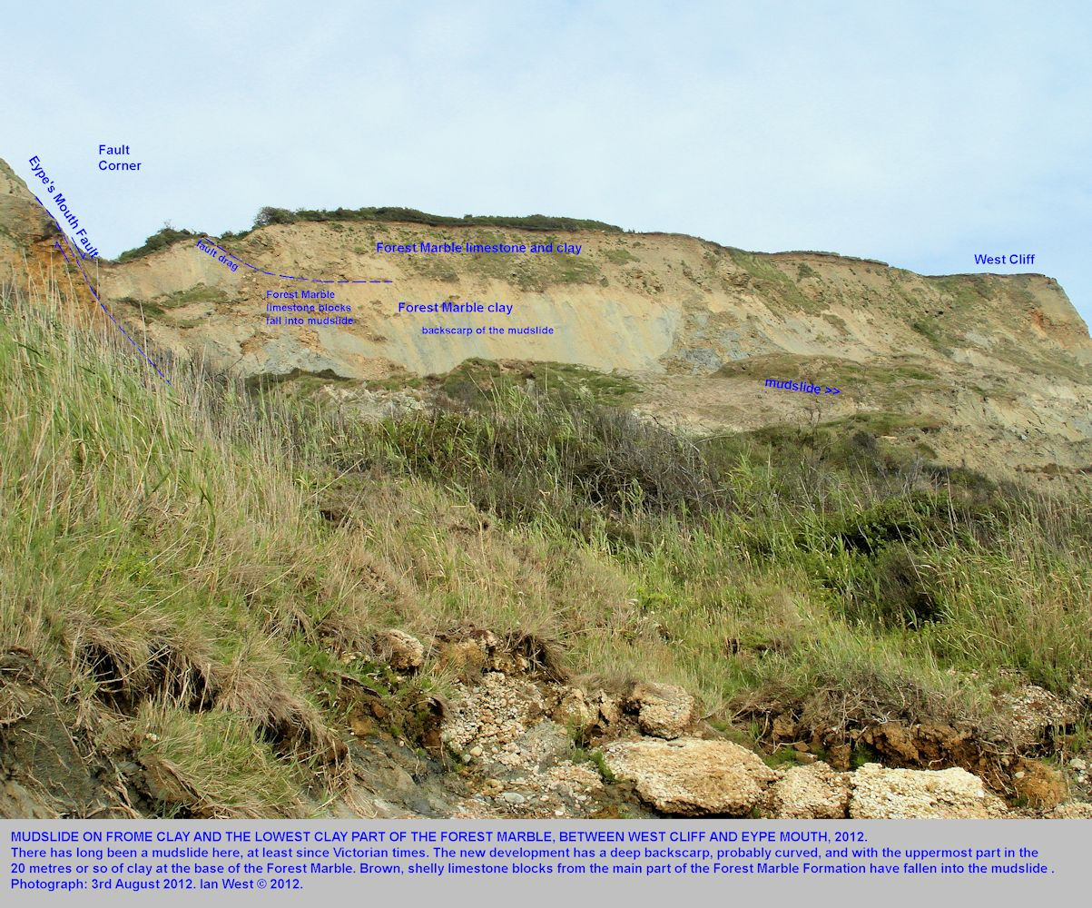 The stratigraphy of the backscarp of the mudslide at Fault Corner,West Cliff between West Bay and Eype Mouth, Dorset