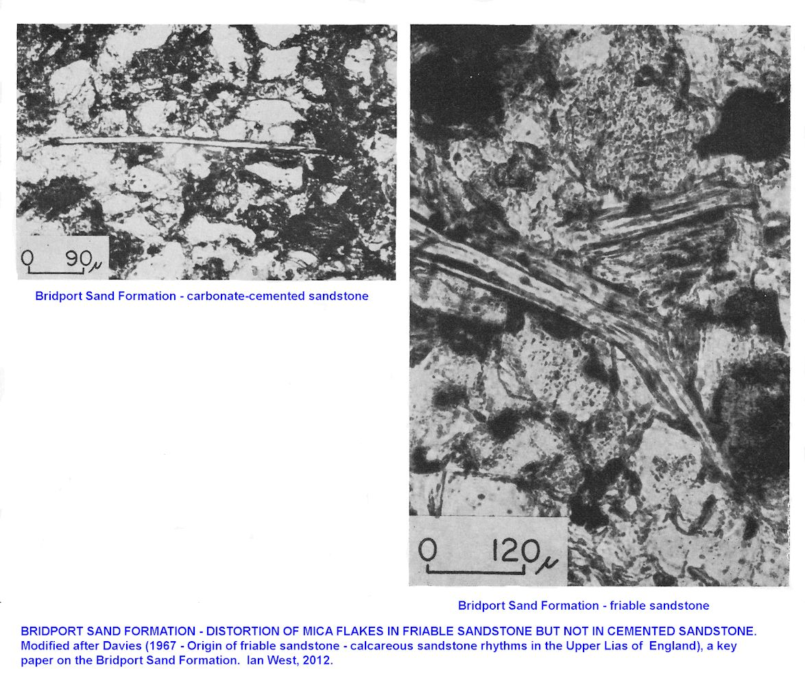 Comparison between compacted friable sandstone and uncompacted carbonate-cemented sandstone, Bridport Sand Formation, after Davies (1967)