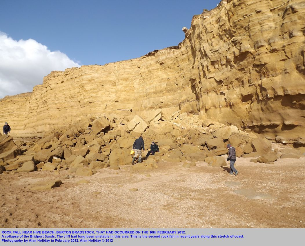 Rock fall of the 10th February 2012, near Hive Beach, Burton Bradstock, Dorset, Alan Holiday photograph