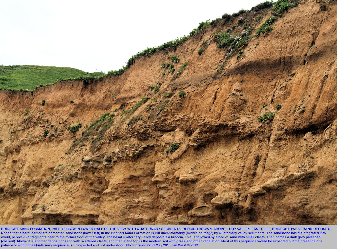 Quaternary deposits in a small dry valley, more detail, East Cliff, West Bay, Bridport, Dorset, 22nd May 2013