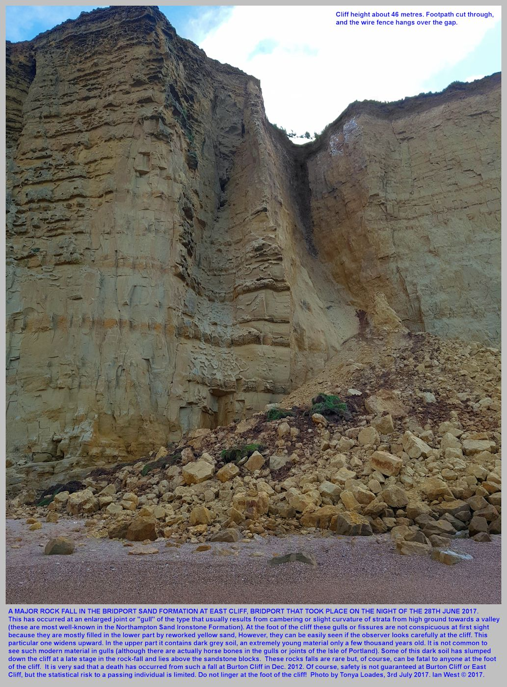 Soil infill in the upper part of a gull or fissure in the Bridport Sand Formation, East Cliff, Bridport, Dorset, photographed by Tonya Loades, 3rd July 2017