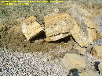 Slumped blocks of Junction Bed at Fault Corner, near Bridport, Dorset