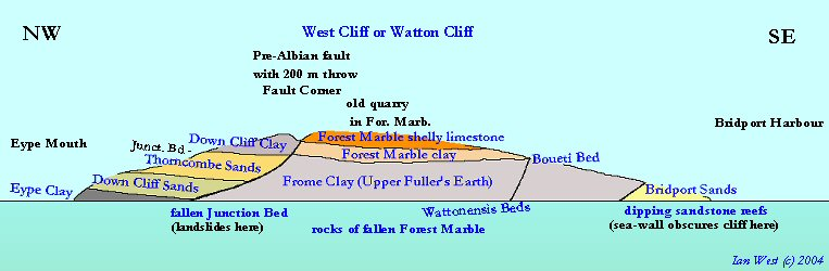 Cliff section of West Cliff or Watton Cliff, West Bay, Bridport, Dorset