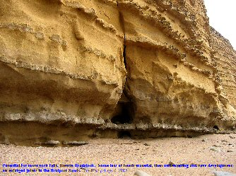 Undercutting and cave development at base of fissures, Burton Bradstock Bridport, Dorset