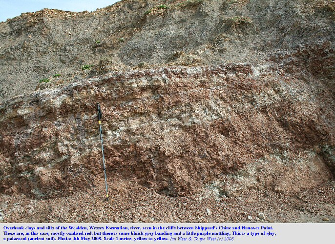 Red overbanks clays and silts of the Wealden river, Wessex Formation, between Compton Grange Chine (Shippard's Chine) and Hanover Point, Isle of Wight, 4th May 2008