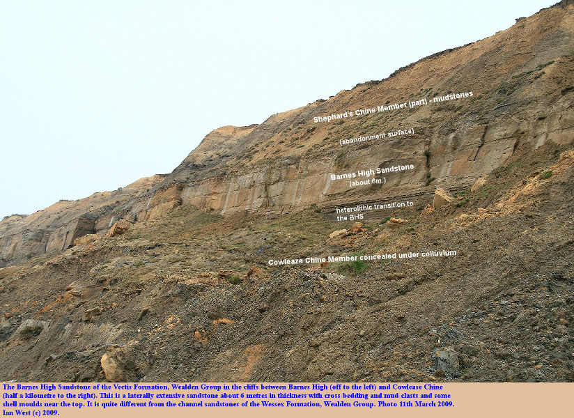 The Barnes High Sandstone of the Vectis Formation, Wealden Group, between Cowleaze Chine and Barnes High, Brighstone Bay, Isle of Wight, 11th March 2009