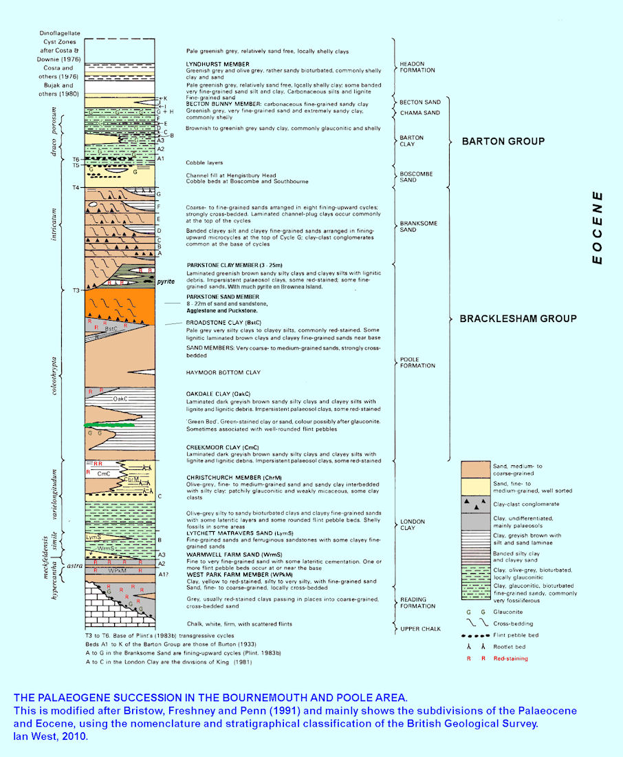The Palaeogene sequence of strata in the Bournemouth-Poole area, Dorset, UK, modified after Bristow et al.