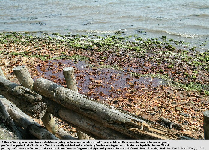 A chalybeate spring on south shore of Brownsea Island, Poole Harbour, stains the pebbles brown, May 2008