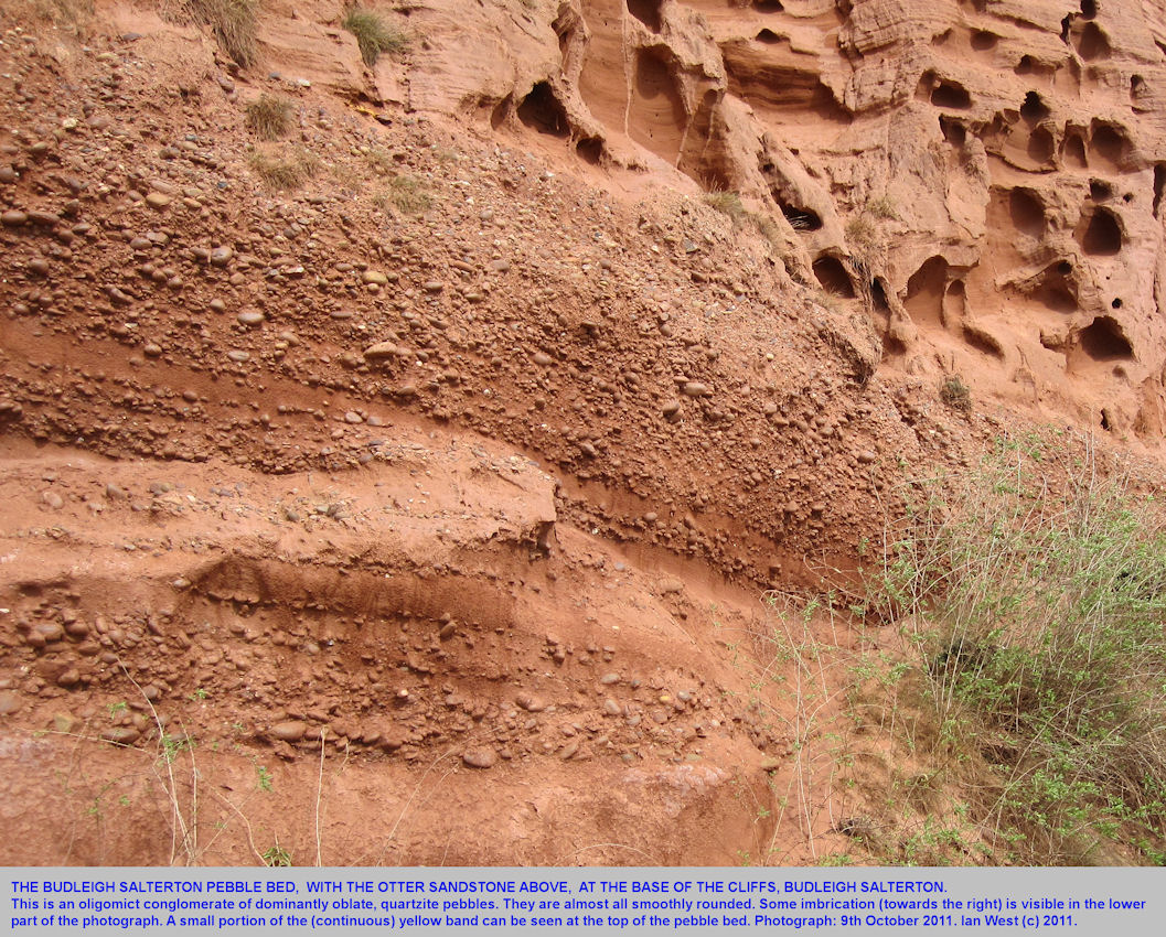 The Budleigh Salterton Pebble Bed with oblate, very rounded pebbles, and some imbrication, cliffs of Budleigh Salterton, Devon, 2011
