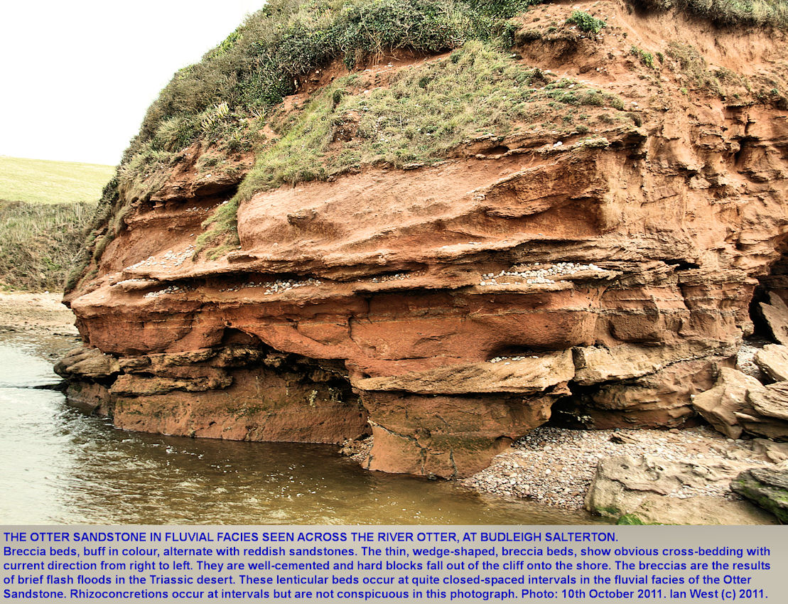 The Otter Sandstone in fluvial facies, with flash-flood breccia beds, is seen across the River Otter at Budleigh Salterton, Devon, 10th October 2011