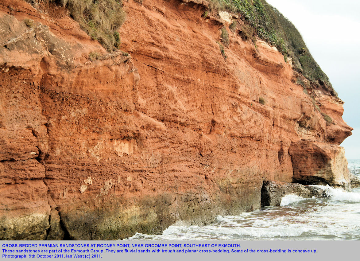 Rodney Point, near Orcombe Rocks, southeast of Exmouth, Devon and exposing Permian sandstones