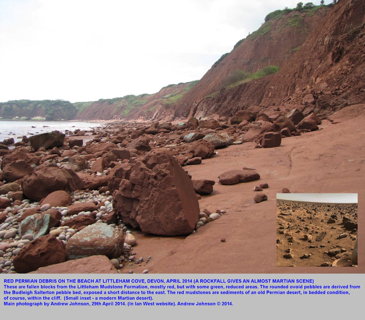 Fallen red mudstone blocks from a rockfall in the cliffs of Littleham Mudstone Formation, west of Budleigh Salterton, Devon, 2014, photograph by Andrew Johnson
