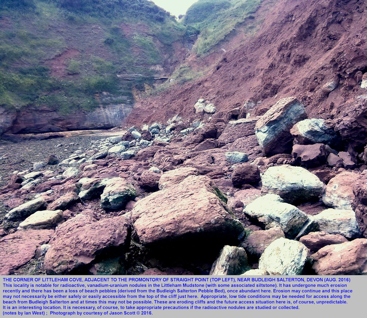 The corner of Littleham Cove, southwest of Budleigh Salterton, Devon, a locality where the Littleham Mudstones contain radioactive nodules, and where there has been significant recent erosion by the sea, August 2016, photograph Jason Scott