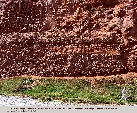 The Triassic Budleigh Salterton Pebble Bed in the cliffs west of Budleigh Salterton, Devon, with the Otter Sandstone above