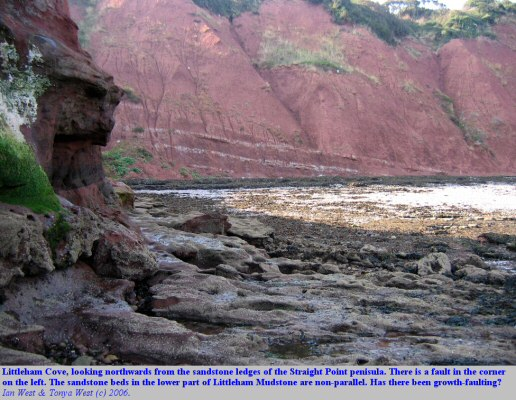 Non-parallelism of sandstone beds in the Littleham Mudstone at Littleham Cove, near Budleigh Salterton, Devon
