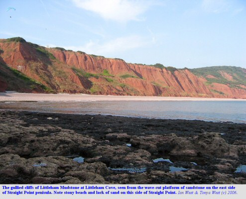 Littleham Cove seen from the ledges on the east side of Straight Point, west of Budleigh Salterton, Devon, 2006