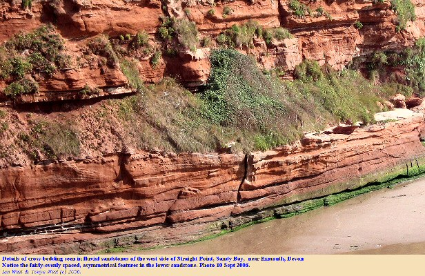 Details of fluvial sandstone cross-bedding in the Exmouth Formation, west side of Straight Point, near Exeter, Devon