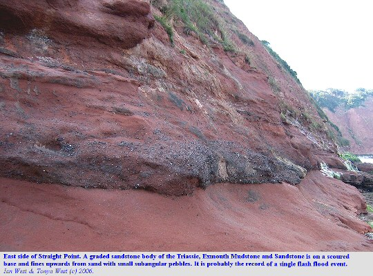 A graded bed, fining upward from sand with pebbles to sand at Straight Point, west of Budleigh Salterton, Devon, 10 September 2006